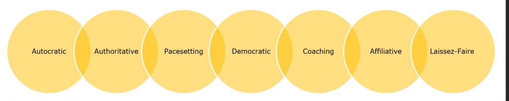 Leadership Styles Organigram